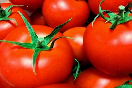 トマトダイエットは夜より朝が効果的!その理由とやり方や口コミ!