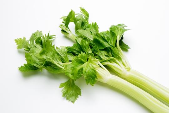 セロリの栄養と5つの効能や効果!むくみや冷え性にテキメン!