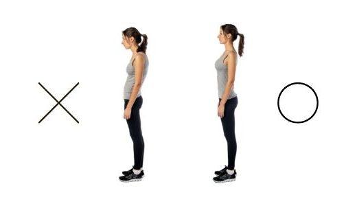 付け根の筋肉 姿勢